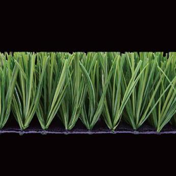 CC Grass: Energy C3N